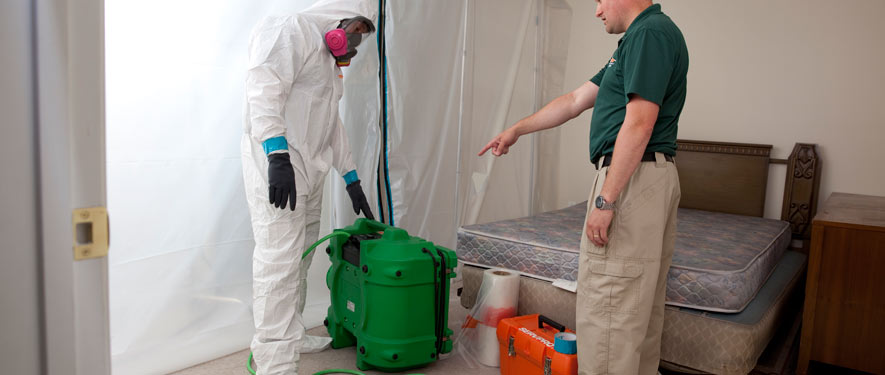 Portsmouth, VA mold removal process